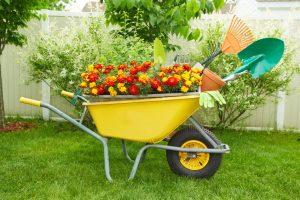 call before you dig a garden