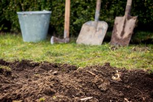 call before you dig excavation services