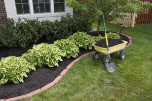 call 811 before you dig for landscaping projects