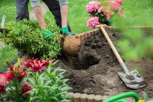Call before you dig in Fort Collins to prevent buried cable damage