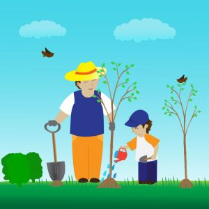 call before you dig Fort Collins utility technicians before planting a tree on your property
